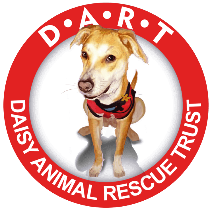 Daisy Animal Rescue Trust
