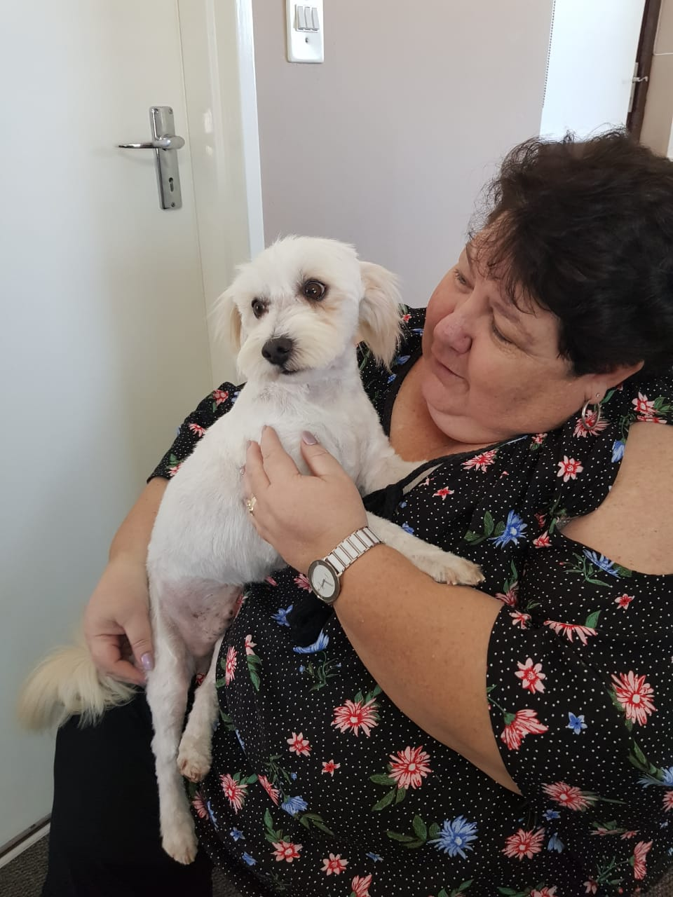 CRO Animal Rescue - Animal Rescue and Pet Adoption Cape Town